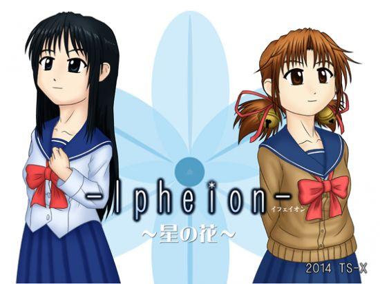 Ipheion -Starflower- G3